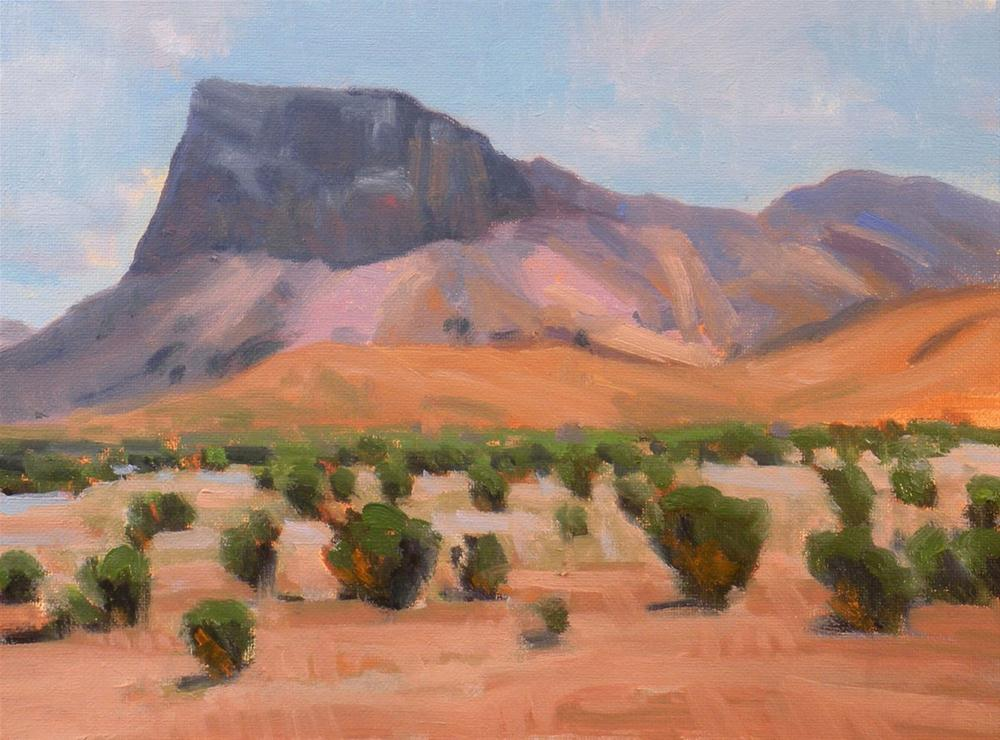 """Mountain and Desert"" original fine art by David Forks"