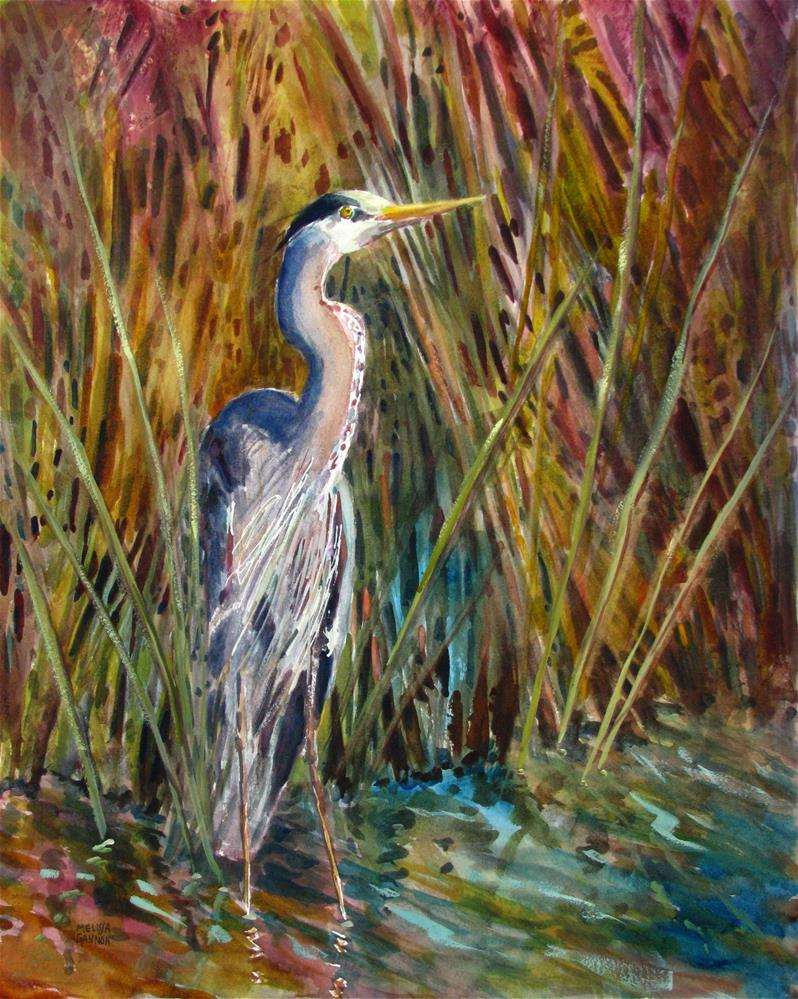 """Heron in the Marsh Peeking Through the Grass"" original fine art by Melissa Gannon"