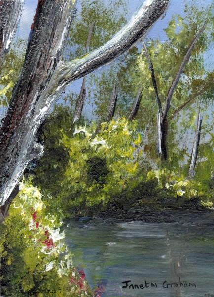 """Summer Days ACEO"" original fine art by Janet Graham"