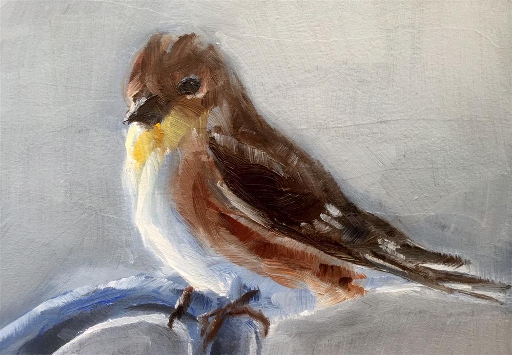 """""""Goldfinch, Winter"""" original fine art by Gary Bruton"""