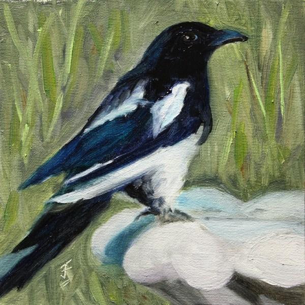"""""""Magpie"""" original fine art by Jane Frederick"""