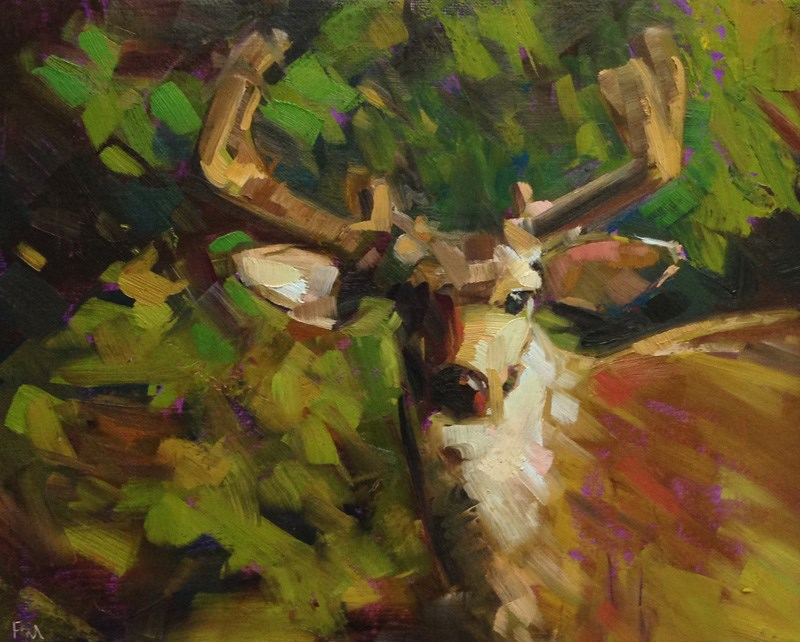 """This is not the Deer you are Looking for..."" original fine art by Patti McNutt"