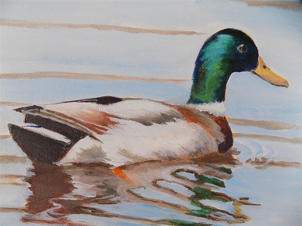 """""""Mallard Duck"""" original fine art by Joan Reive"""