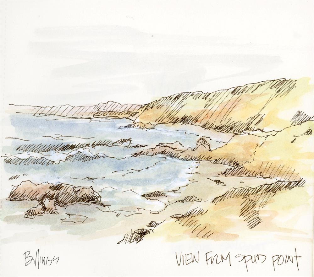 """""""Spud Point Sketch"""" original fine art by Susanne Billings"""