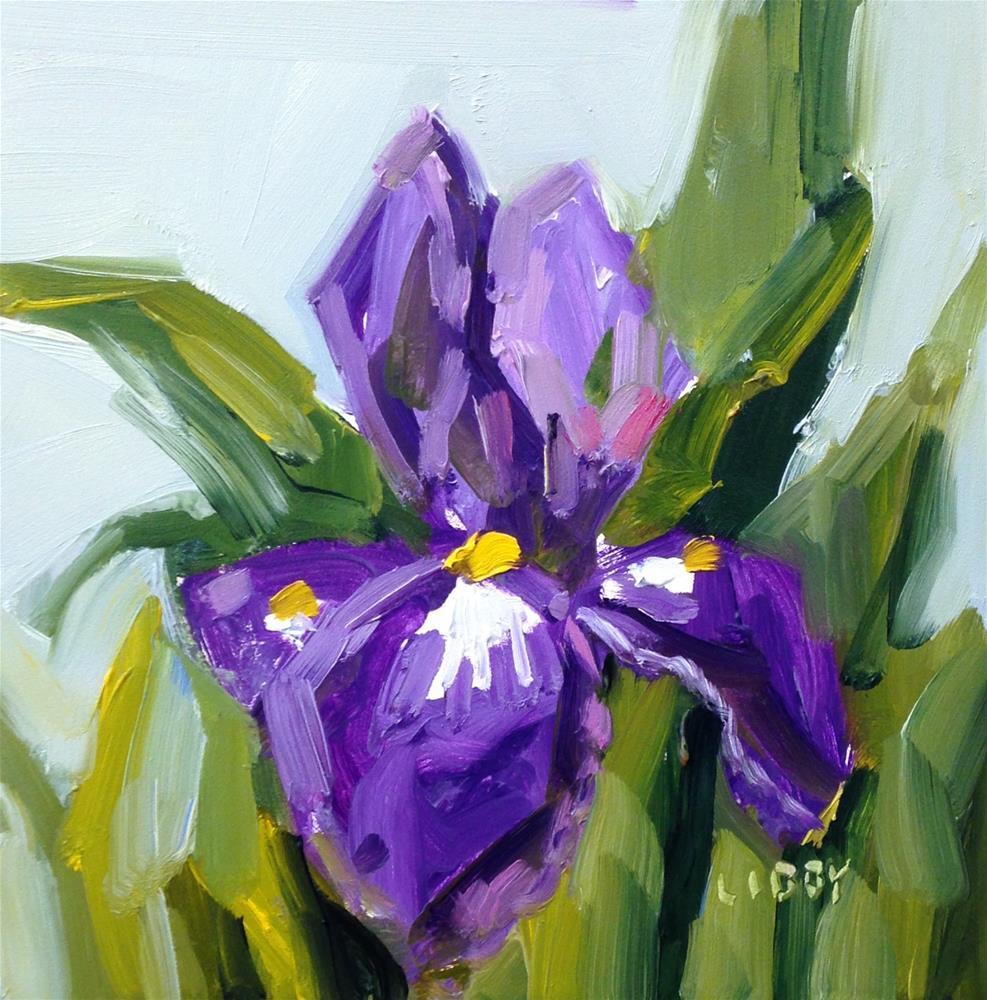 """Quiet Iris"" original fine art by Libby Anderson"