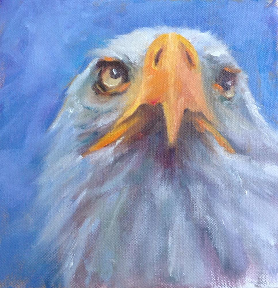 """Eagle Eyes"" original fine art by Linda Carney"