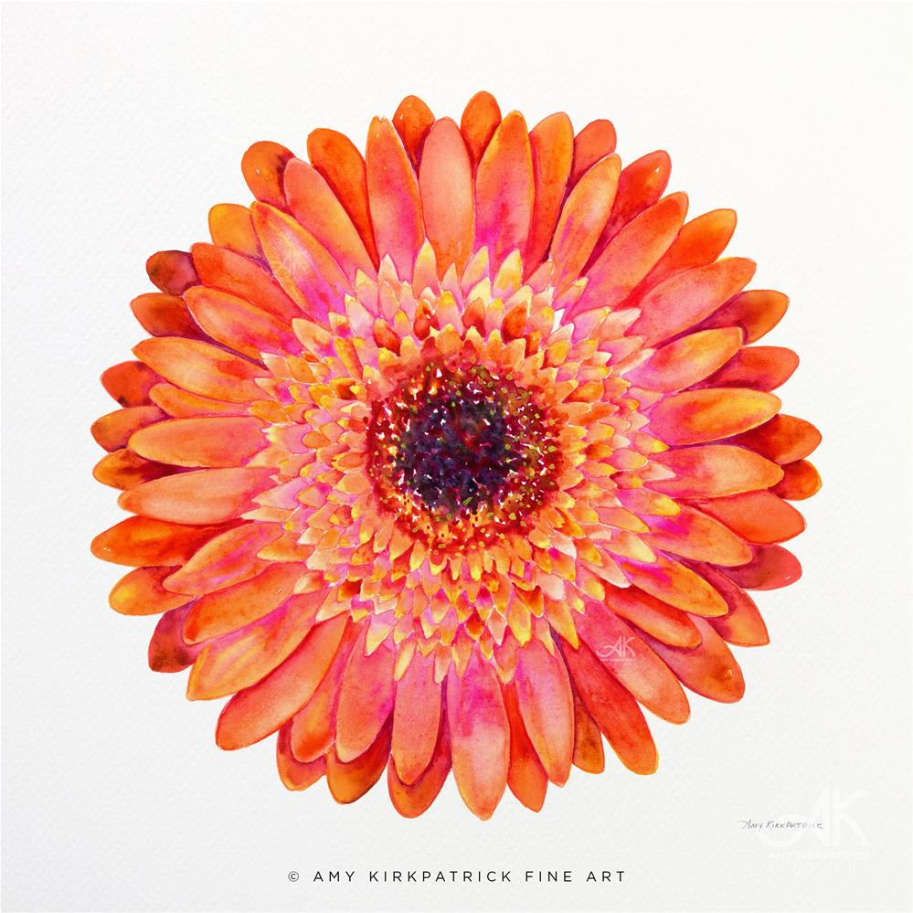 """ORANGE GERBERA DAISY #0511"" original fine art by Amy Kirkpatrick"