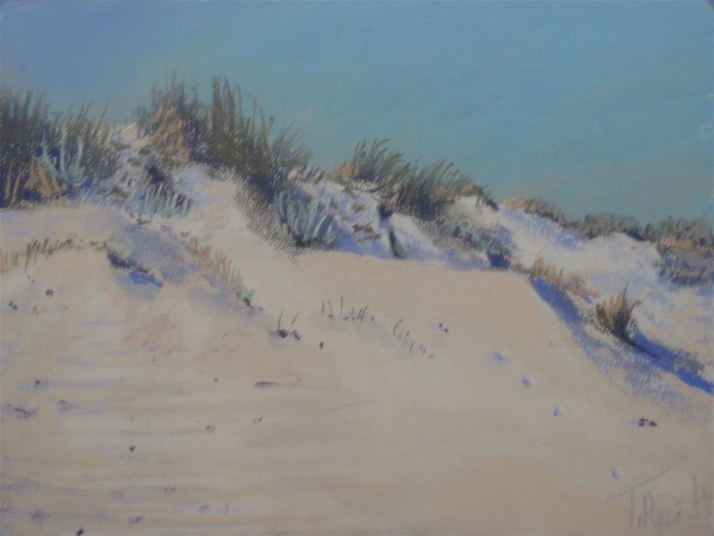 """""""Wild Dunes"""" original fine art by Toby Reid"""
