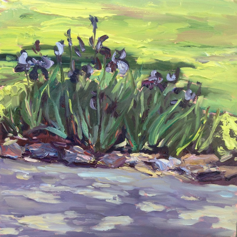"""Roadside iris"" original fine art by Claudia L Brookes"
