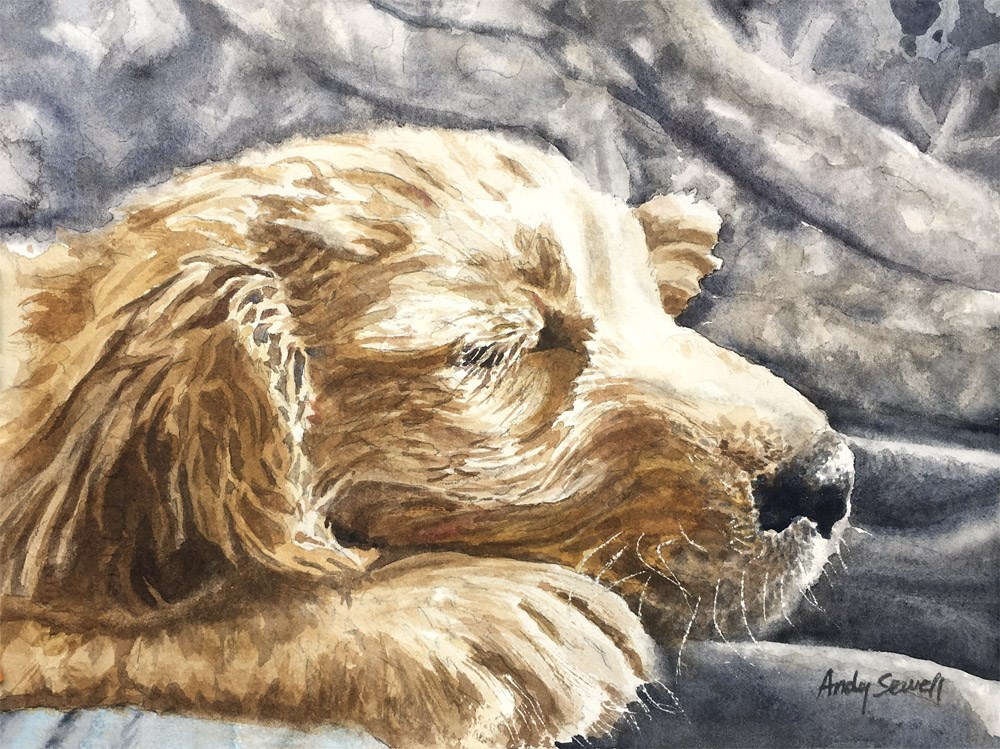 """Golden Pup"" original fine art by Andy Sewell"