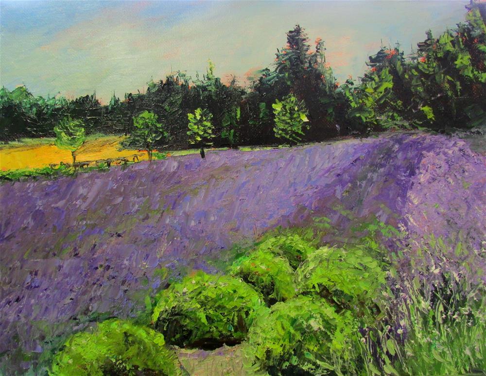 """11 x 14 inch oil In the Lavendar"" original fine art by Linda Yurgensen"