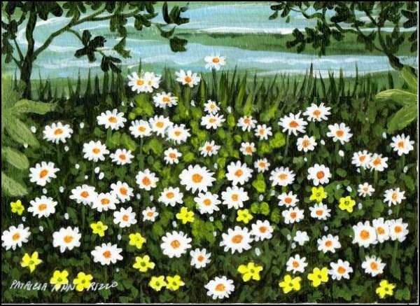 """Daisies by the Lake"" original fine art by Patricia Ann Rizzo"