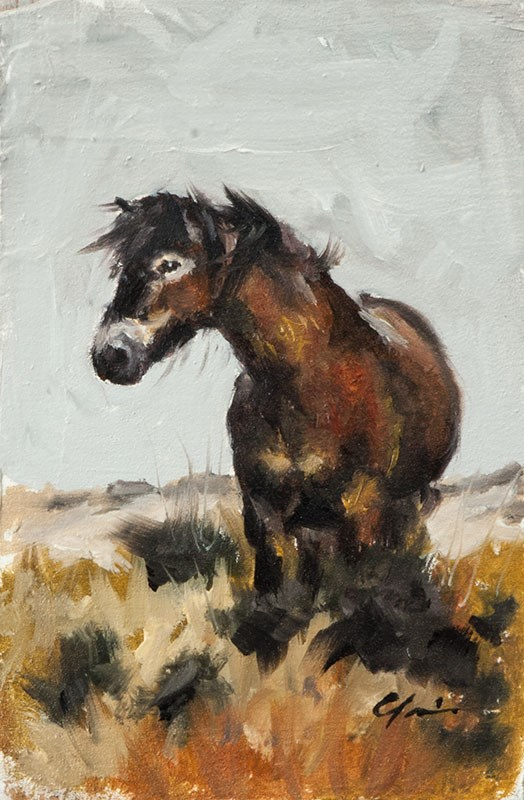 """Windswept Pony"" original fine art by Clair Hartmann"