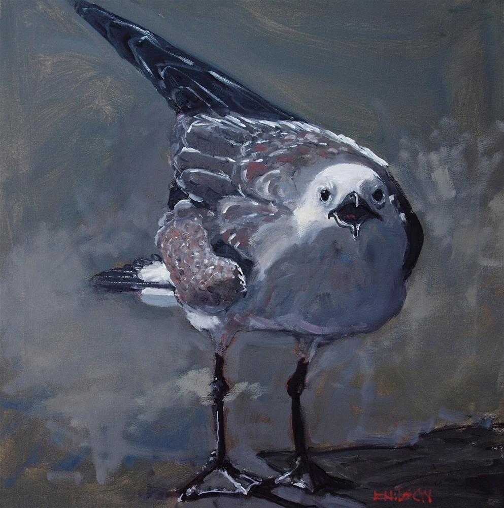 """Blue Gray Gull"" original fine art by Rick Nilson"