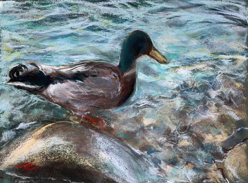 """""""Mallard on the Rocks"""" original fine art by Jean Krueger"""