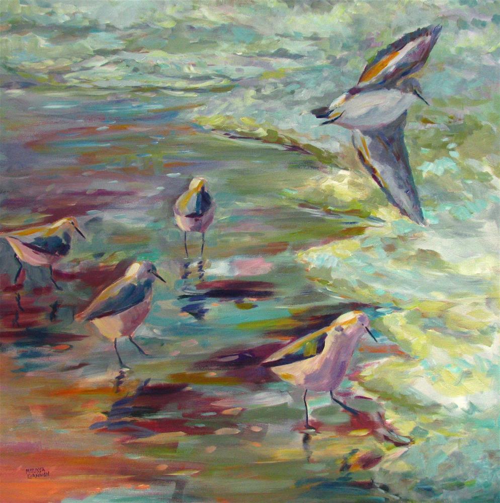 """Birds at the Beach"" original fine art by Melissa Gannon"