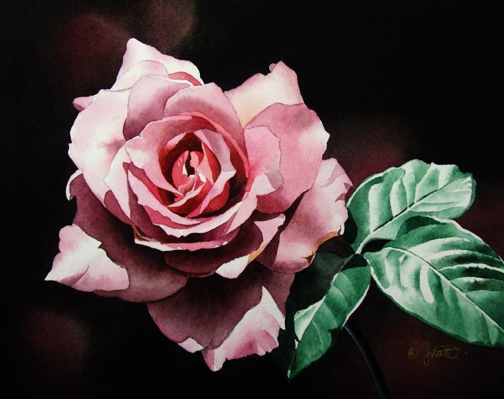 """""""Dark Pink Rose"""" original fine art by Jacqueline Gnott, TWSA, WHS"""