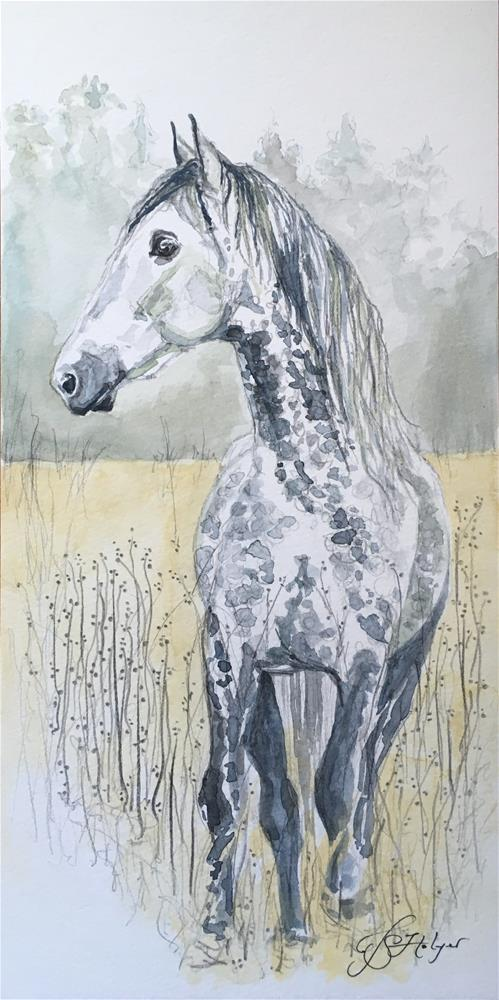 """Grey Horse Long"" original fine art by Jen Holyer"