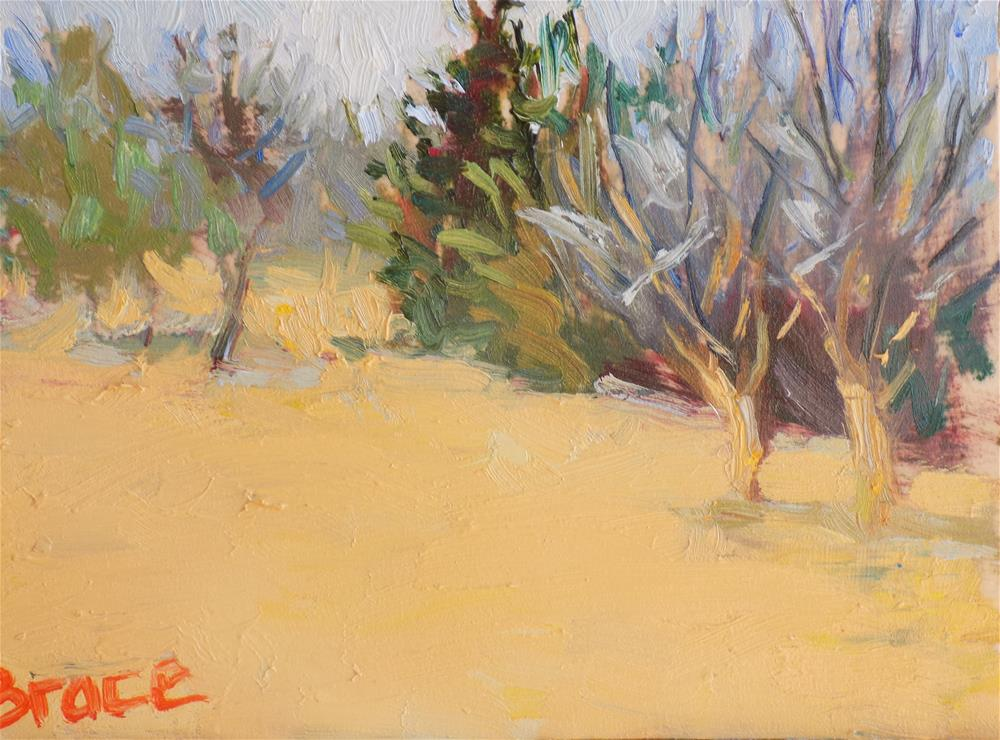 """Oklahoma My New Back Yard"" original fine art by Rita Brace"