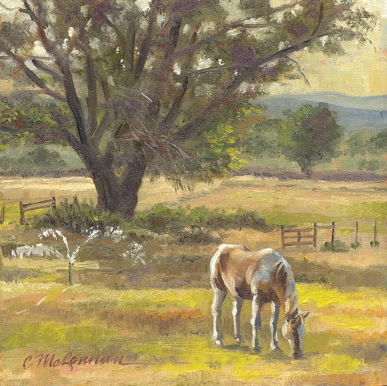 """Morning Cool"" original fine art by Connie McLennan"