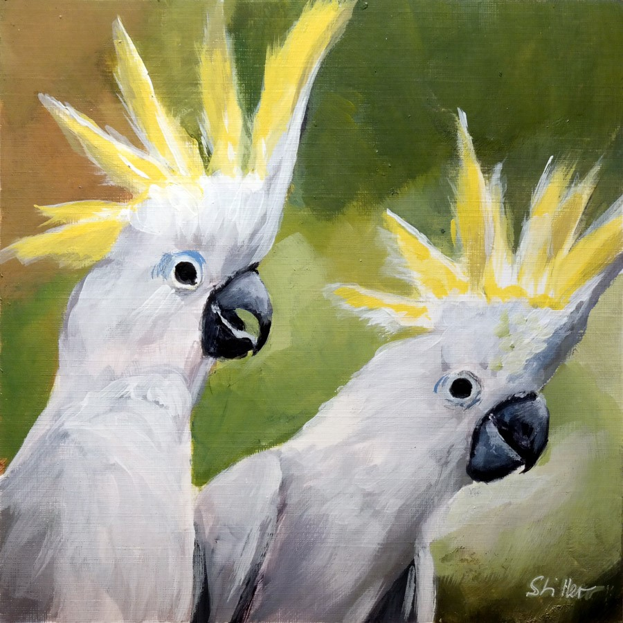 """2742 Cockatoos "" original fine art by Dietmar Stiller"