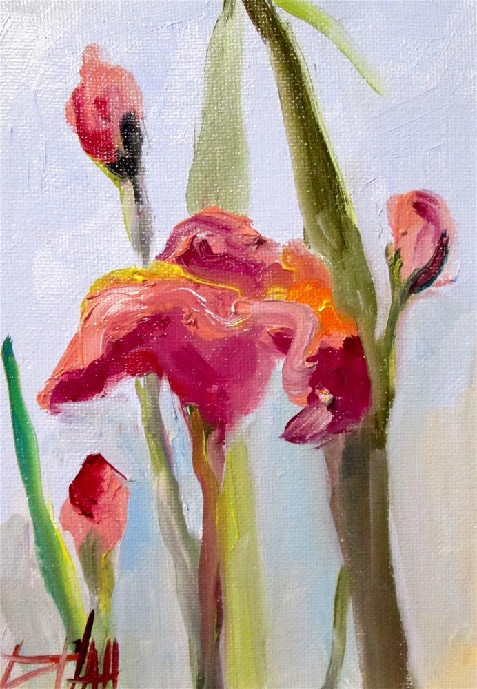 """Pink Iris"" original fine art by Delilah Smith"