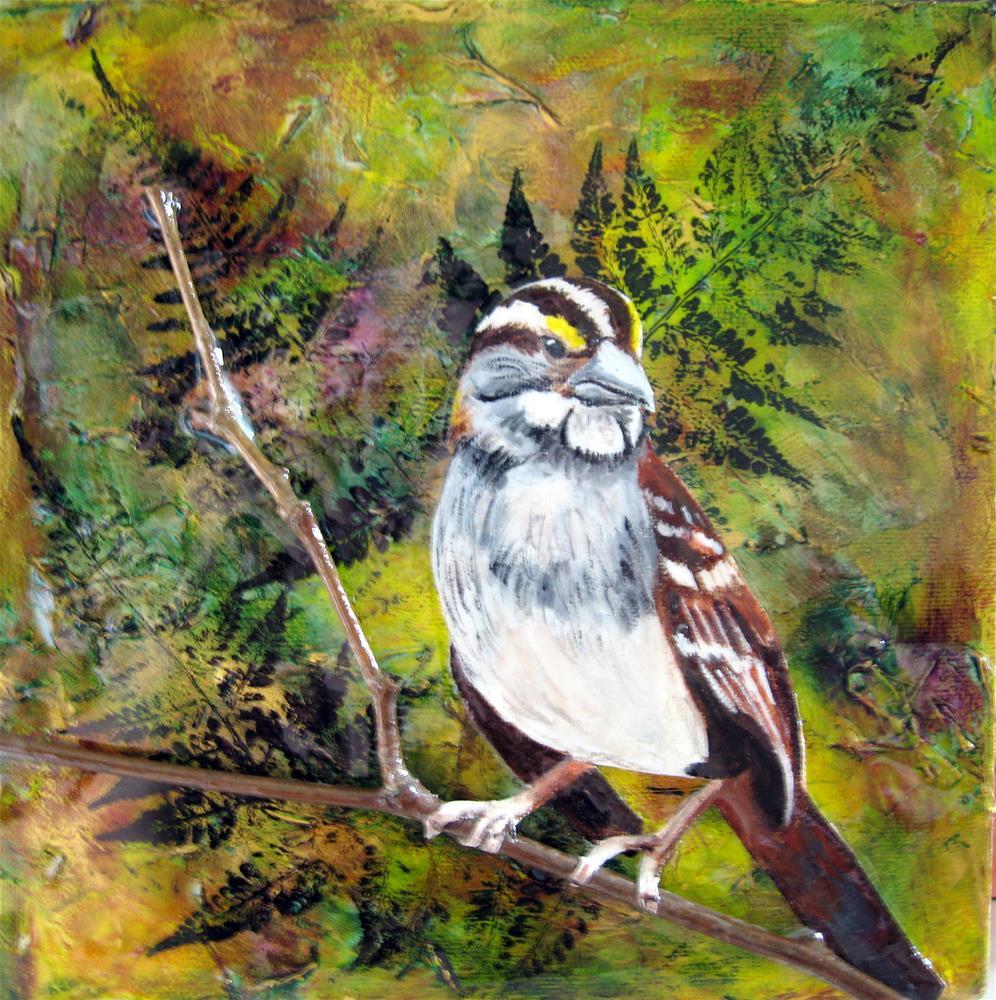 """White Throated Sparrow"" original fine art by Lisa Wiertel"