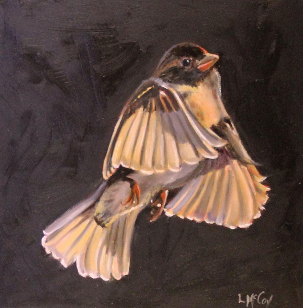 """Morning Sun, Bird in Flight"" original fine art by Linda McCoy"