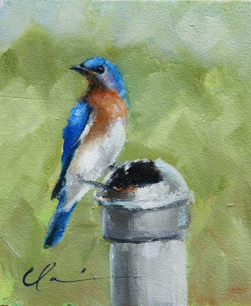 """""""Bluebird"""" original fine art by Clair Hartmann"""