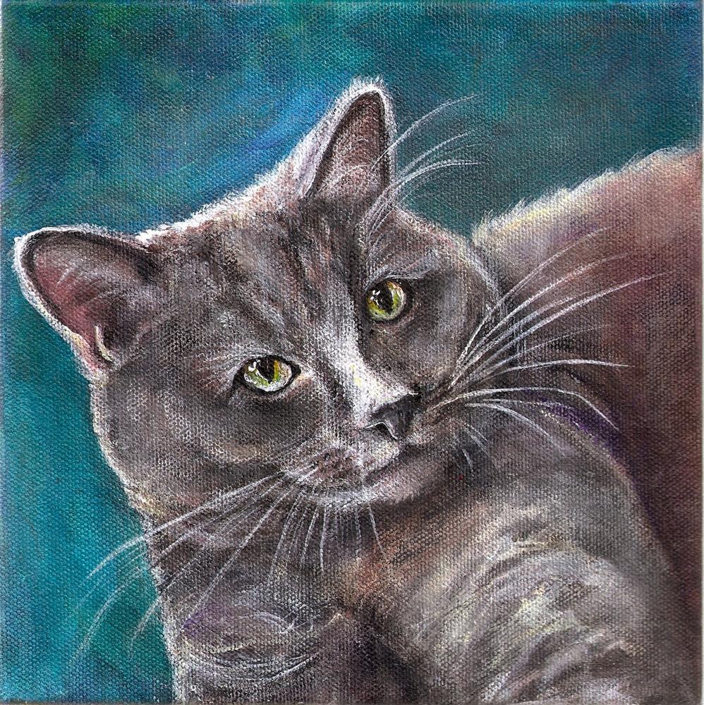 """8x8 Acrylic Grey Tabby Cat Pet Portrait, SFA, Square Art"" original fine art by Penny Lee StewArt"