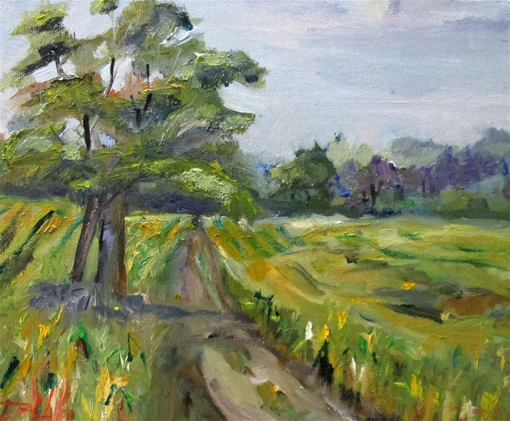 """Corn Field"" original fine art by Delilah Smith"