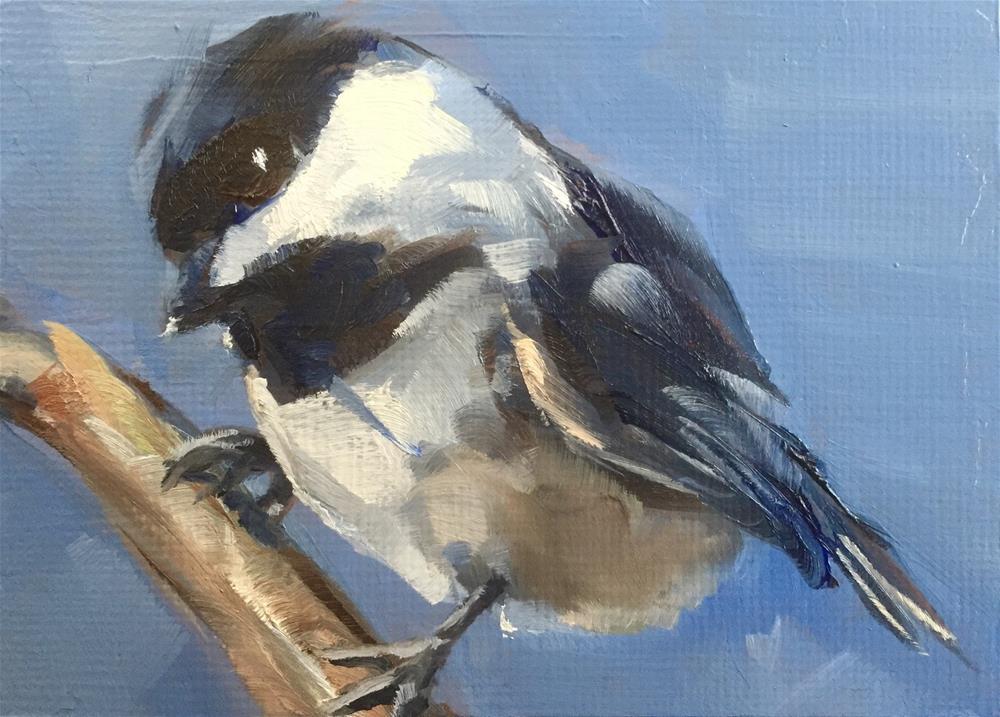 """""""Curious Chickadee"""" original fine art by Gary Bruton"""