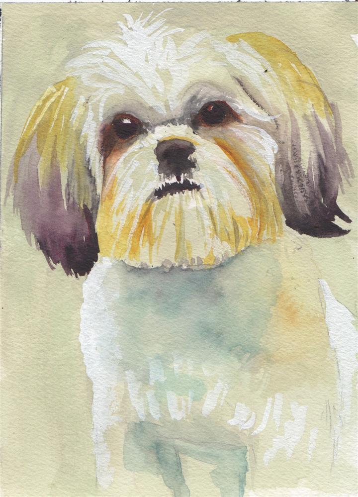 """""""Shihzu Dog """" original fine art by Bunny Griffeth"""