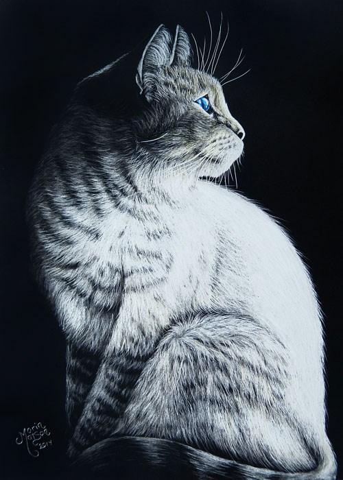 """Sitting Cat"" original fine art by Monique Morin Matson"