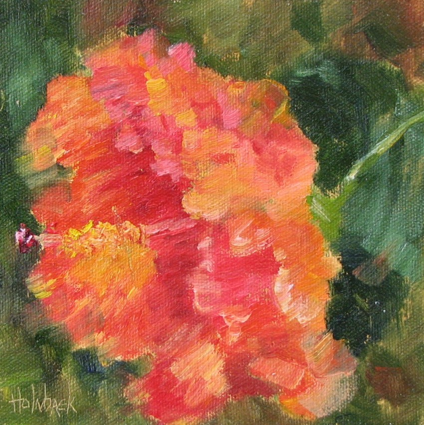 """Hana Hibiscus  -  100 Garden & Floral Oil Paintings 99/100"" original fine art by Pam Holnback"