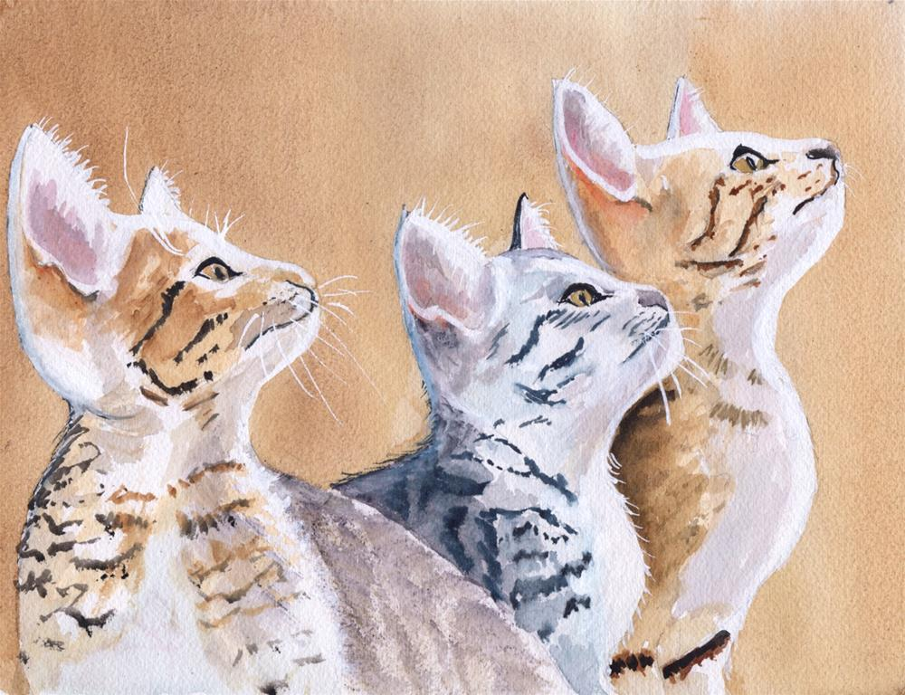 """Kittens"" original fine art by Bunny Griffeth"