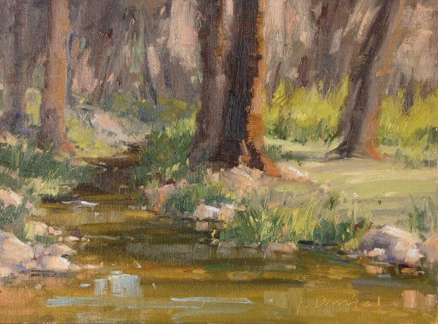 """Creek Shadows - Kerrville Outdoor Painting Event"" original fine art by Laurel Daniel"