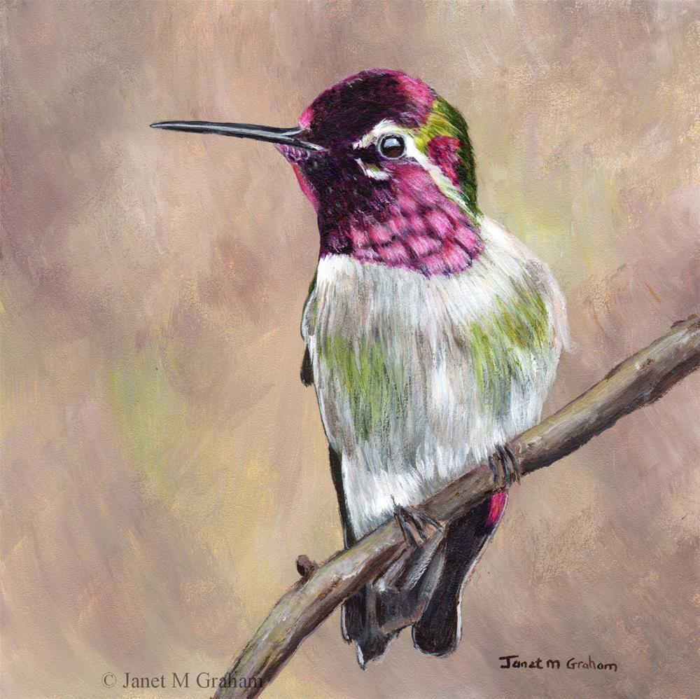 """Hummingbird 2"" original fine art by Janet Graham"