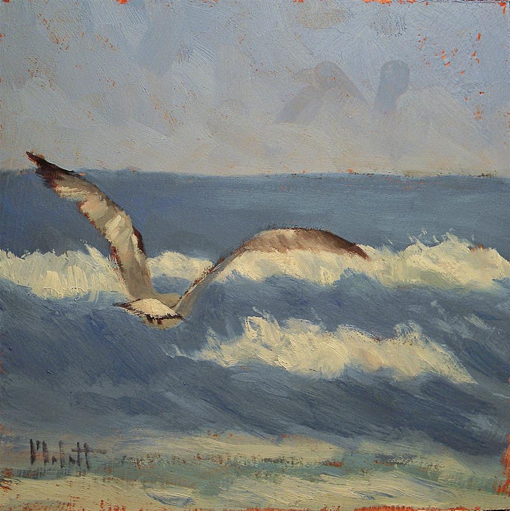 """Seagull in Flight Spring Break Series"" original fine art by Heidi Malott"