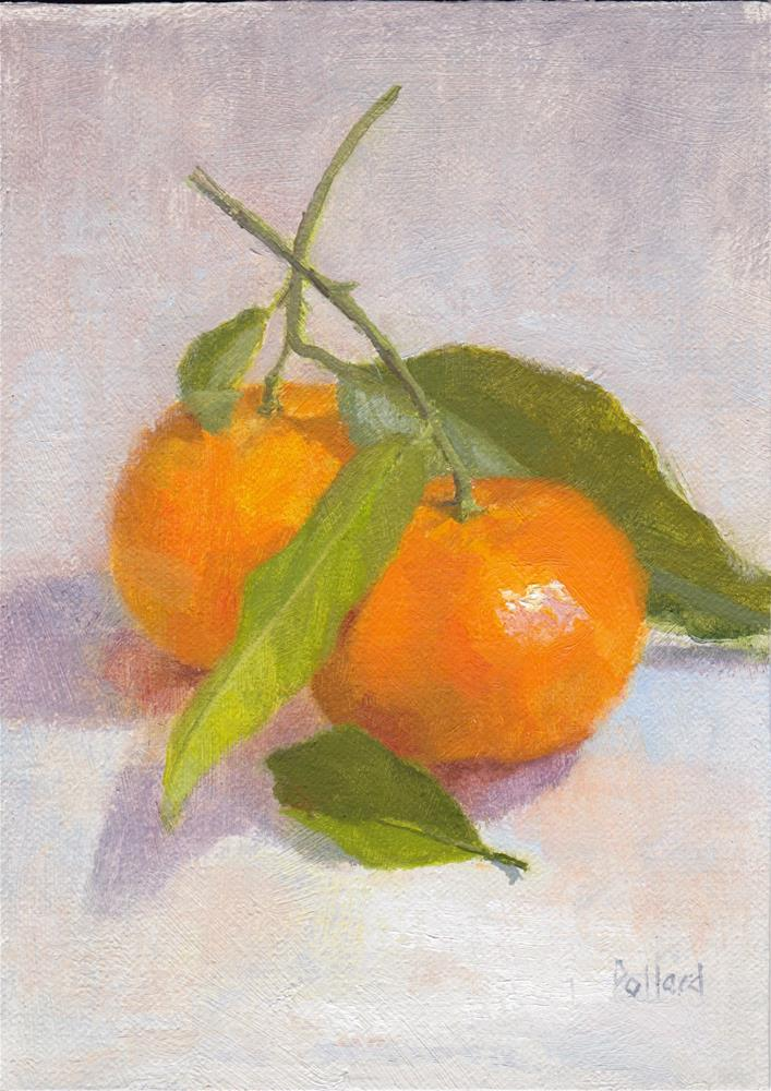 """Fresh from the Store - Clementines"" original fine art by Susan Pollard Gillespie"