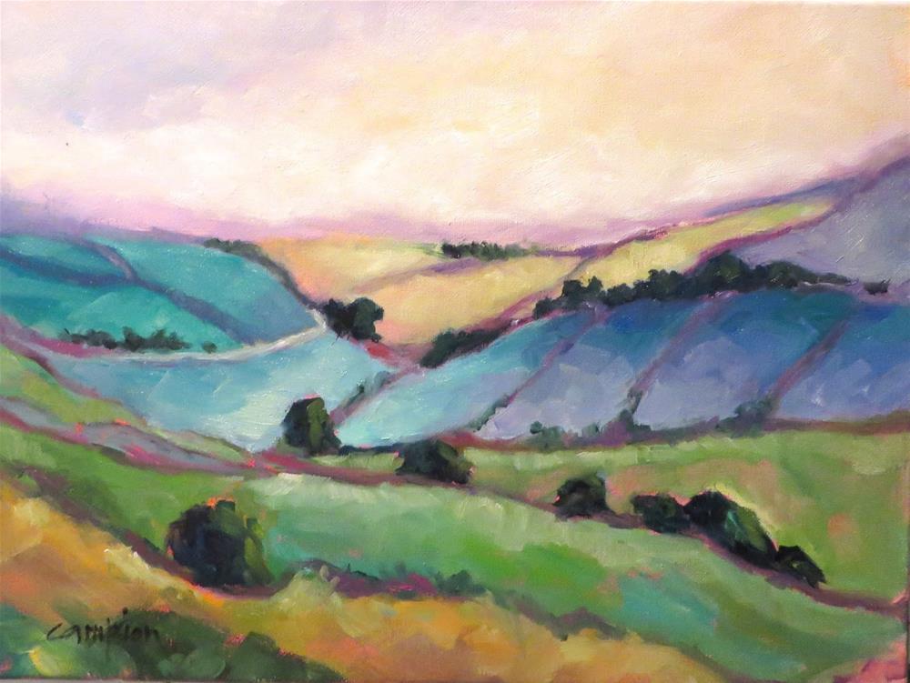 """""""816 Somewhere in Ireland"""" original fine art by Diane Campion"""