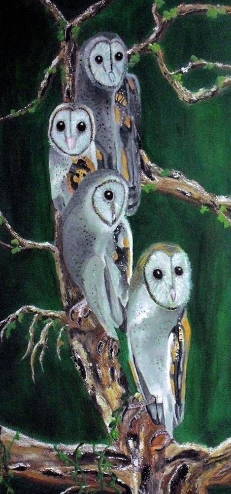 """""""Young Barn Owls"""" original fine art by Dia Spriggs"""