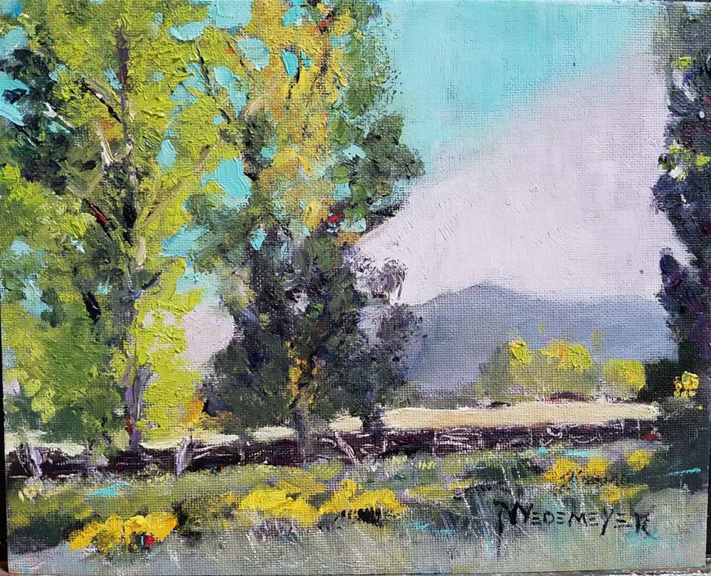 """Fall View of Tumacacori Mts."" original fine art by Pamela Wedemeyer"
