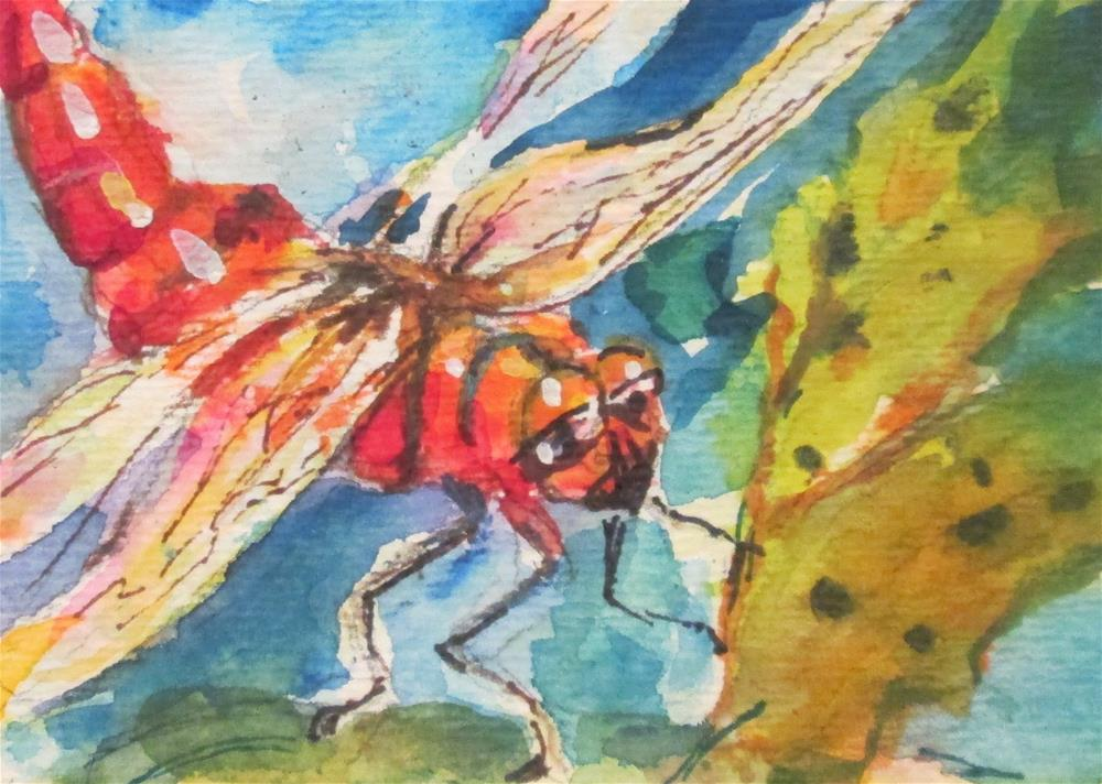 """""""Red Dragonfly"""" original fine art by Delilah Smith"""