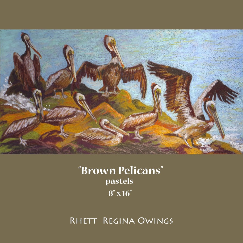 """Brown Pelicans"" original fine art by Rhett Regina Owings"