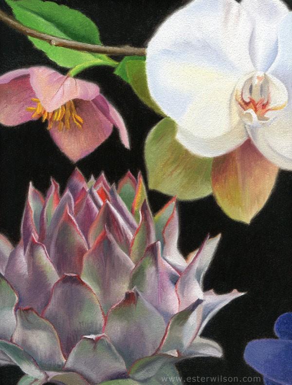 """""""Flora V"""" original fine art by Ester Wilson"""