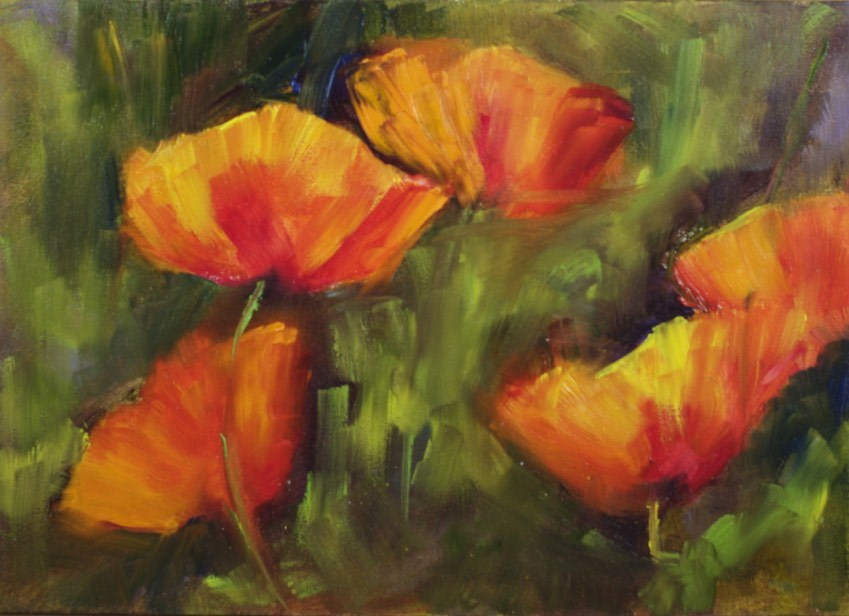 """Glowing Poppies"" original fine art by Sue Churchgrant"