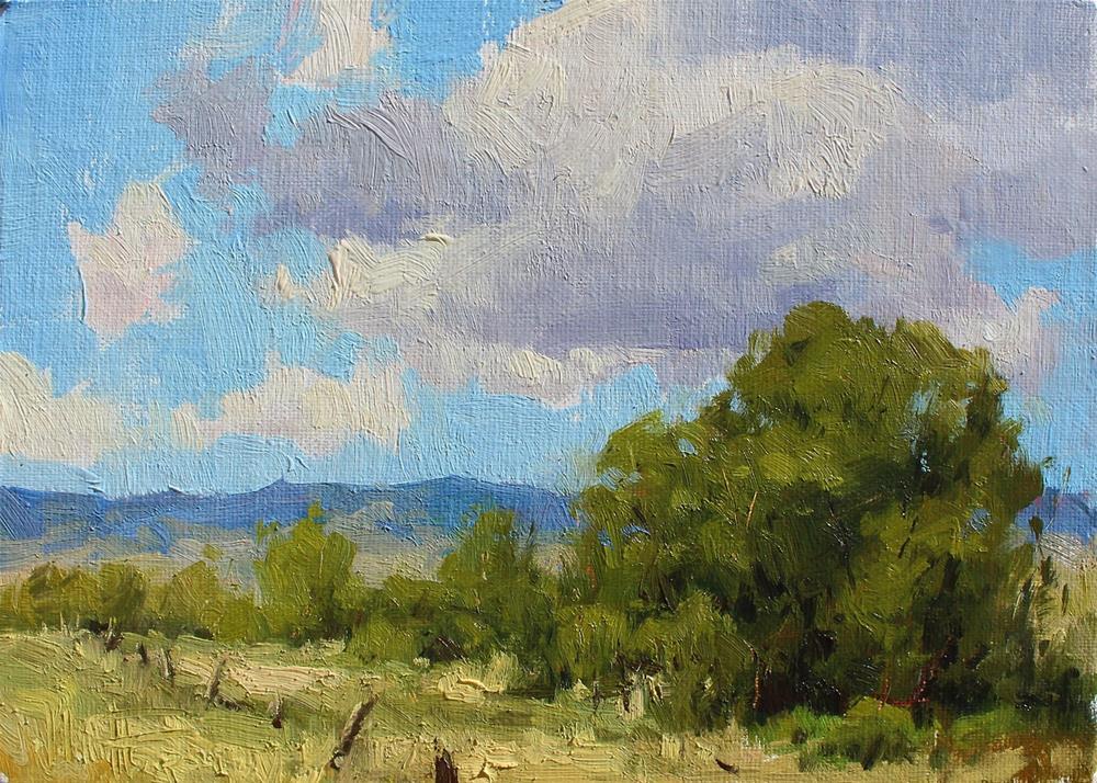 """Summer Skies"" original fine art by Melanie Thompson"