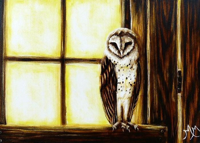 """Barn Owl"" original fine art by Monique Morin Matson"