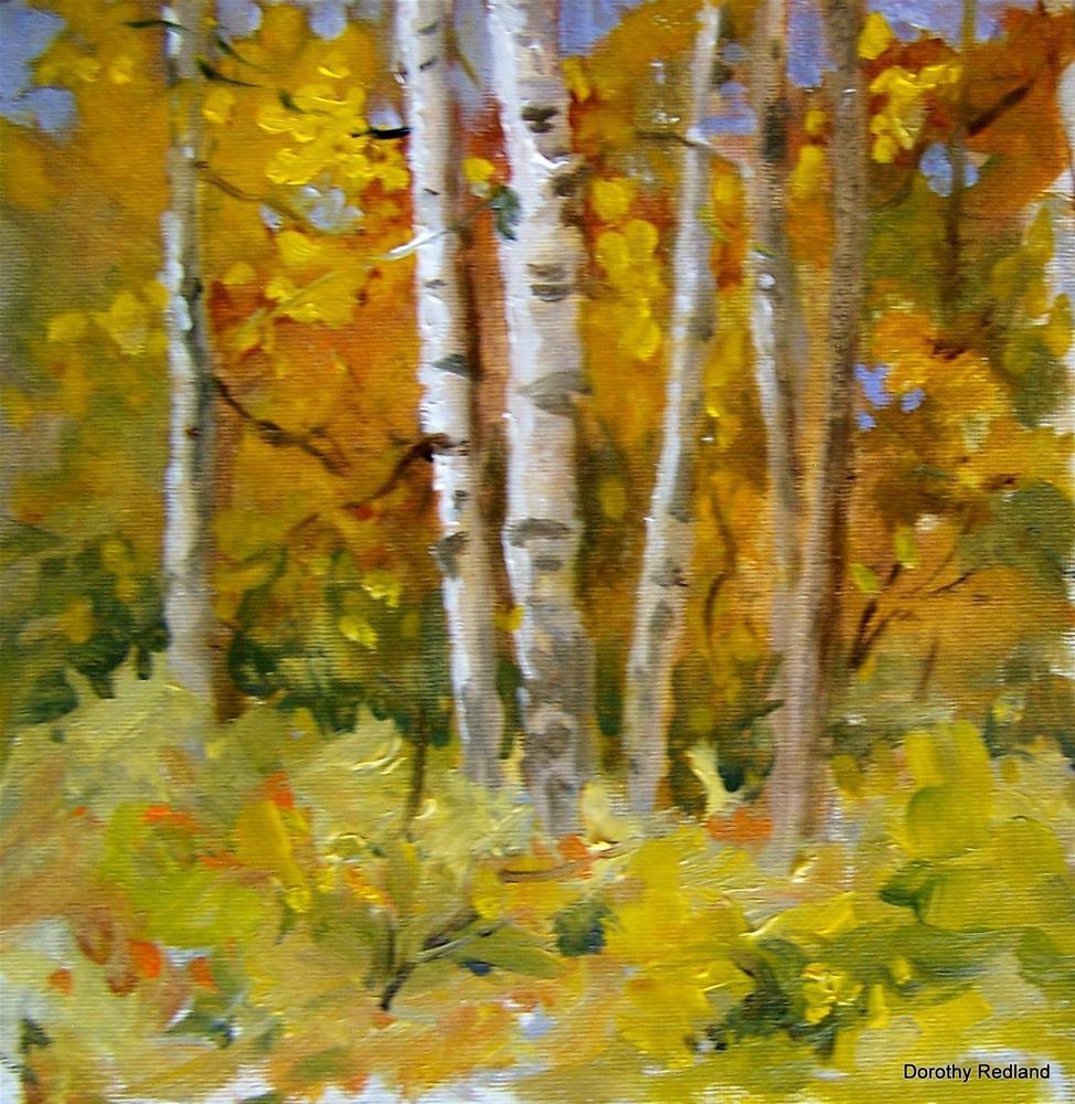 """""""Aspen Grove"""" original fine art by Dorothy Redland"""